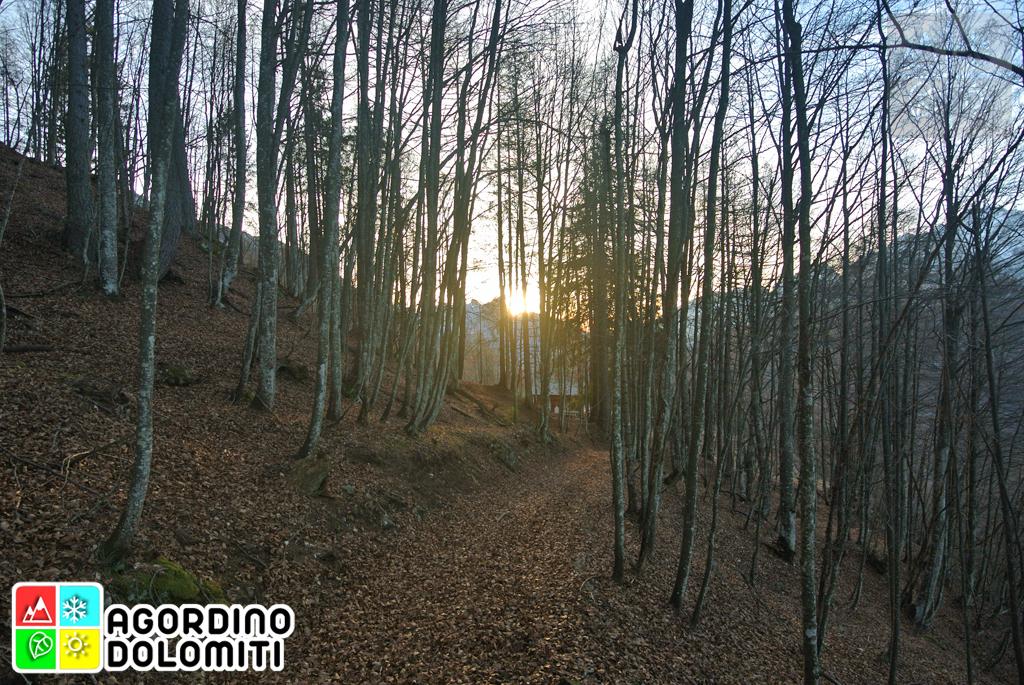 Rivamonte Agordino, Belluno, Veneto, Dolomiti