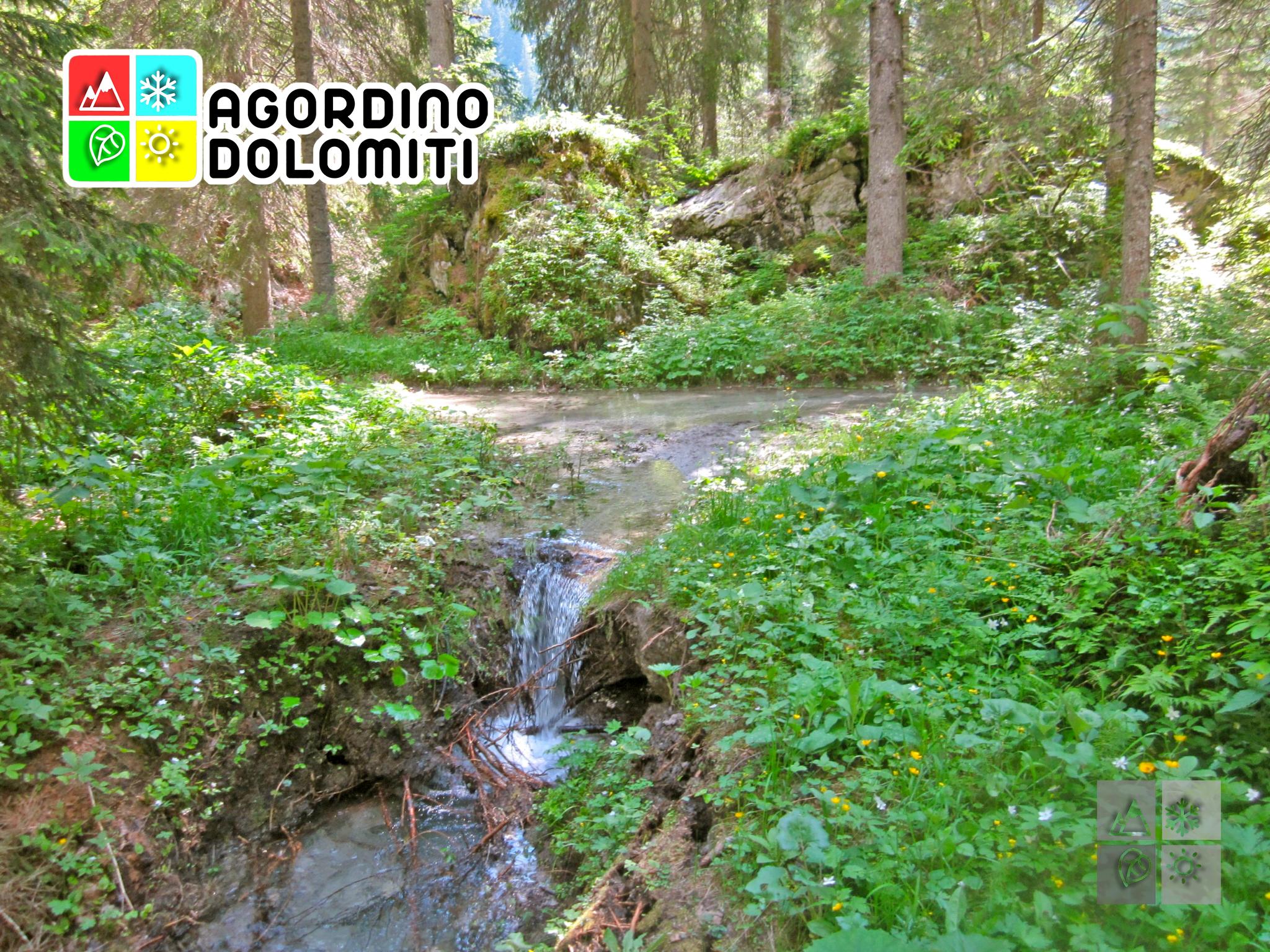 Biotopo della Valle di Gares