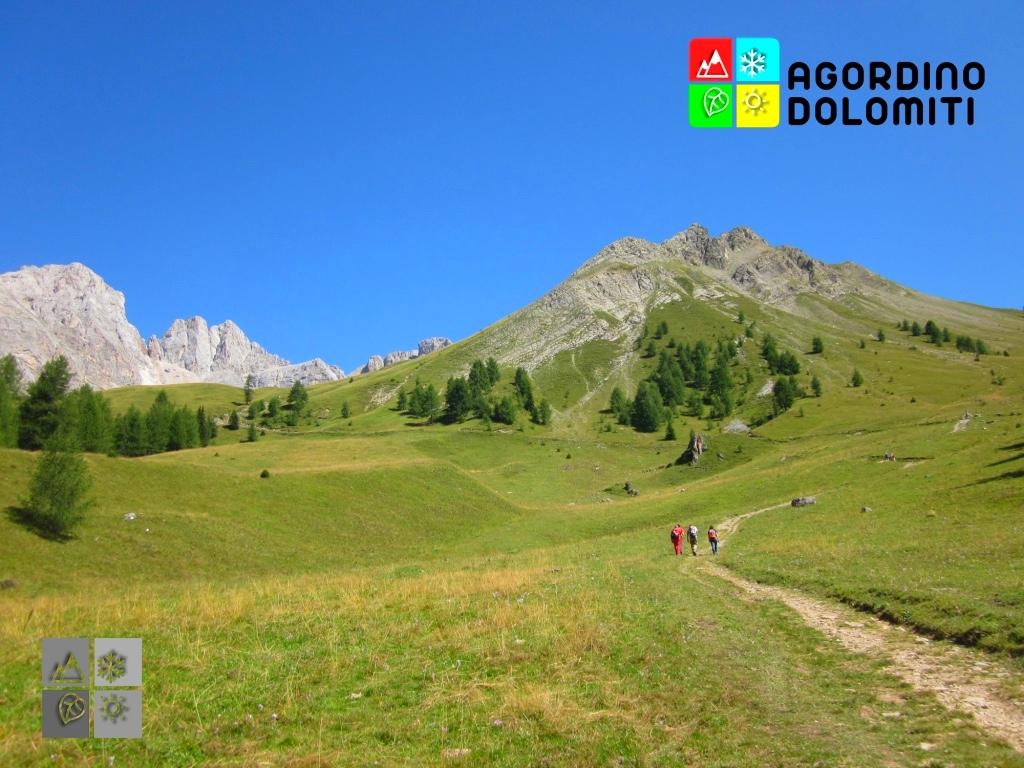 Valfredda | Falcade | Val Biois | Dolomiti UNESCO
