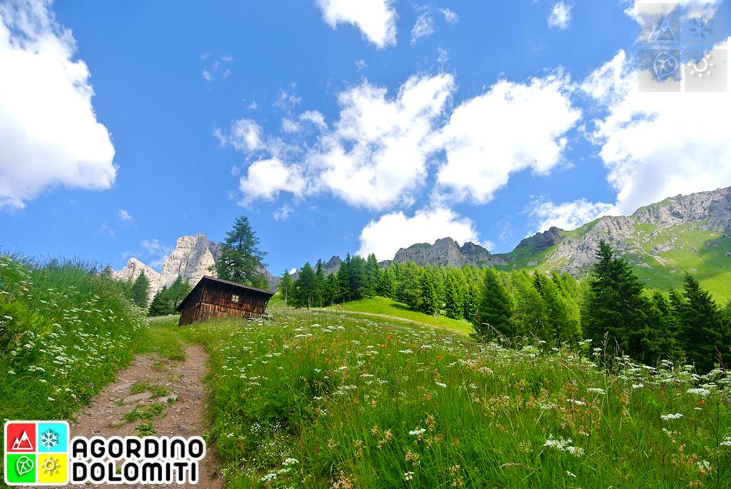 Baita Col Mont (Colmont) | Dolomiti