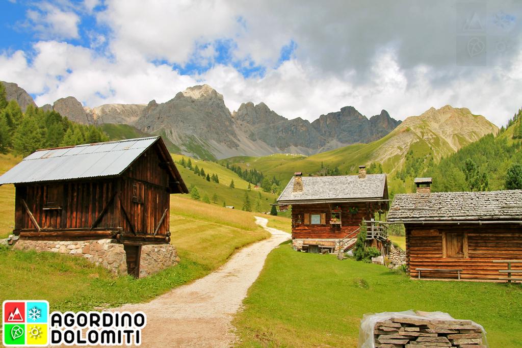 Falcade Valfredda Dolomiti