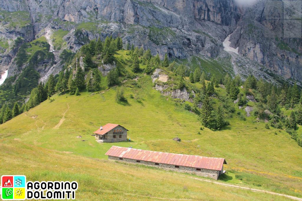 Malga Losch | Monte Agner | Pale di San Martino | Dolomiti