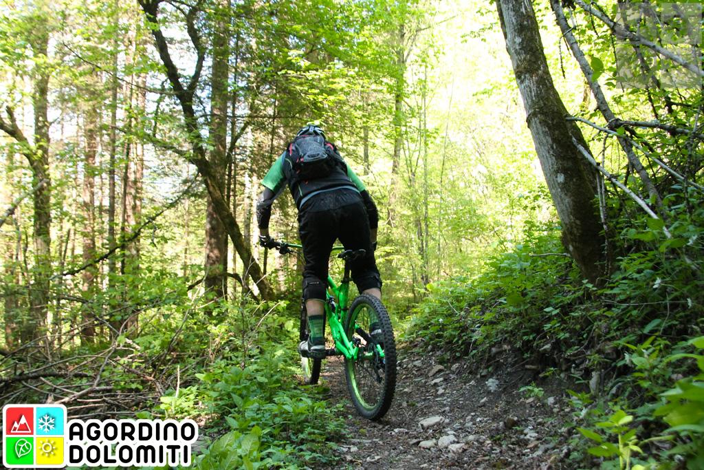 Mountain Bike Agordino